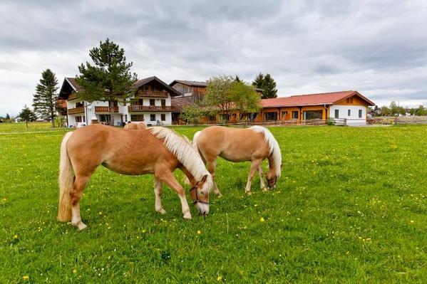 Bauernhof Augustinerhof - Aussenansicht