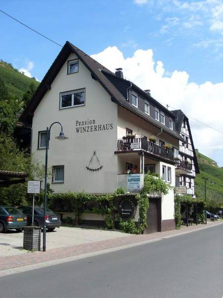 Pension Winzerhaus - Vista al exterior