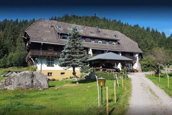 Hotel Blasiwälder Hof - Widok