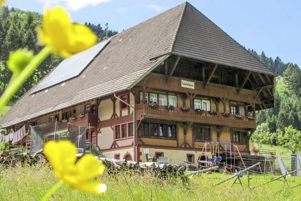 Bauernhof Wäldebauernhof - Exteriör