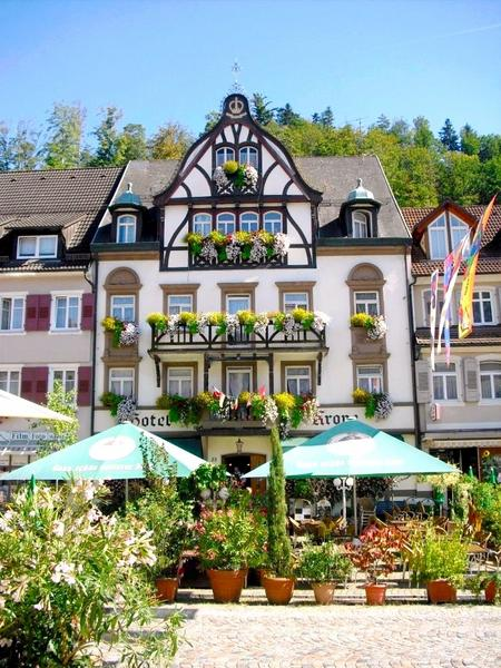 Hotel Krone - Widok