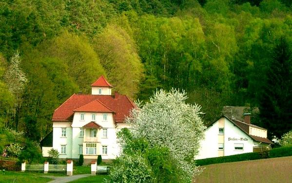 Gasthof-Pension am Walde - Widok