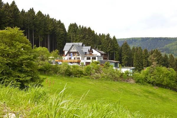 Wald Hotel Willingen - Outside