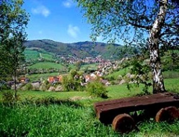 Pension Schwanenhof - Omgivning