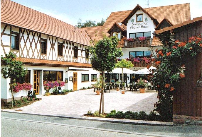 Hotel Restaurant Gruner Baum Lahr