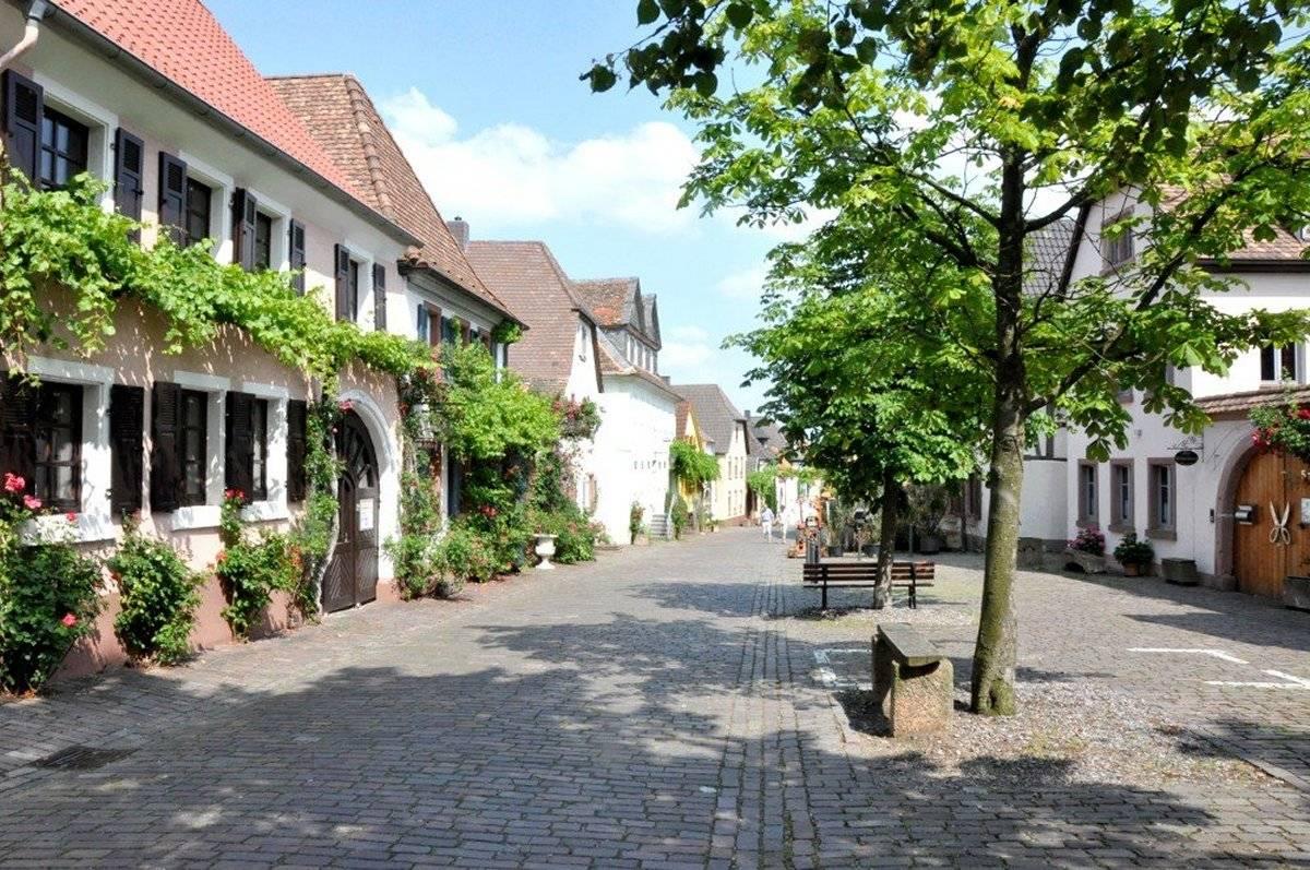 Hotel In Rhodt Unter Rietburg Ferienwohnungen Haus Rietburgblick